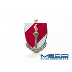 Distintivo EAS Oficial con Laurel 1 Estrella Ejercito Nacional